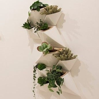 D&M | Nature For Urban Living Spaces