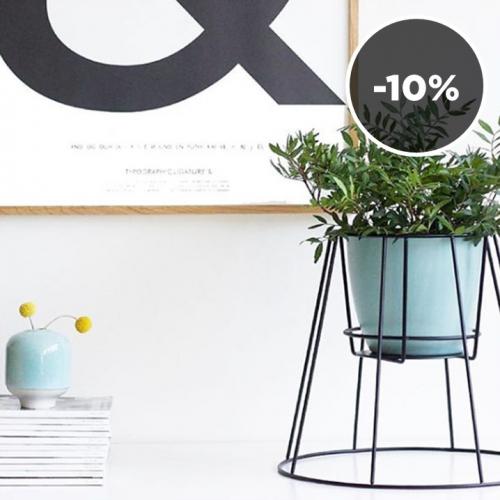 OK DESIGN | Divine Plant Holders
