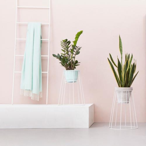 OK DESIGN | Moderne Pflanzenhalter für grüne Akzente