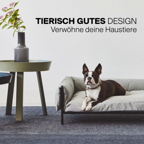 Tierisch gutes Design | Verwöhne deine Haustiere