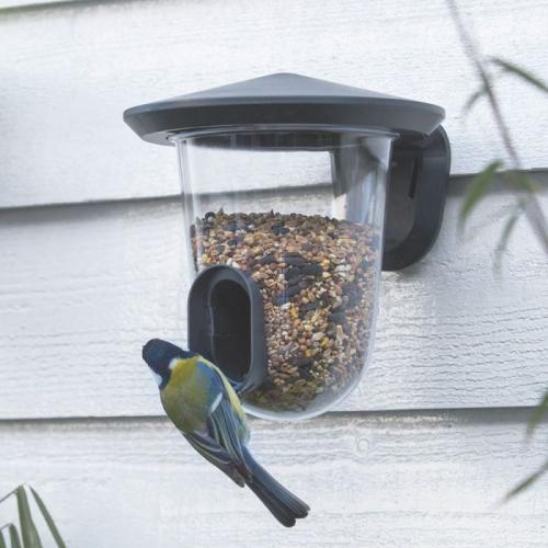 SingingFriend | Süße Vogelhäuschen & trendige Futterstellen