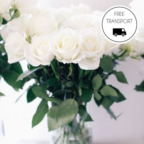 Snd. | Flowers & Plants at your Doorstep