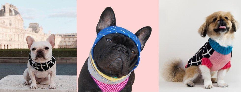 Decovrycom Exclusive Home Decoration - Carrelage salle de bain et tapis rafraichissant chien